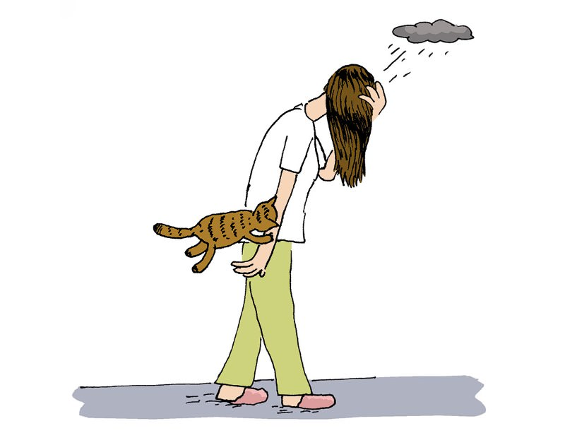 Feedback: Do cats give you the blues?