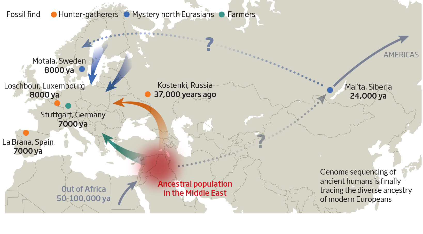 Oldest European genome illuminates diverse ancestry