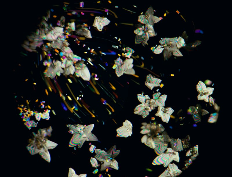 Enter the kaleidoscopic world of cancer drug crystals