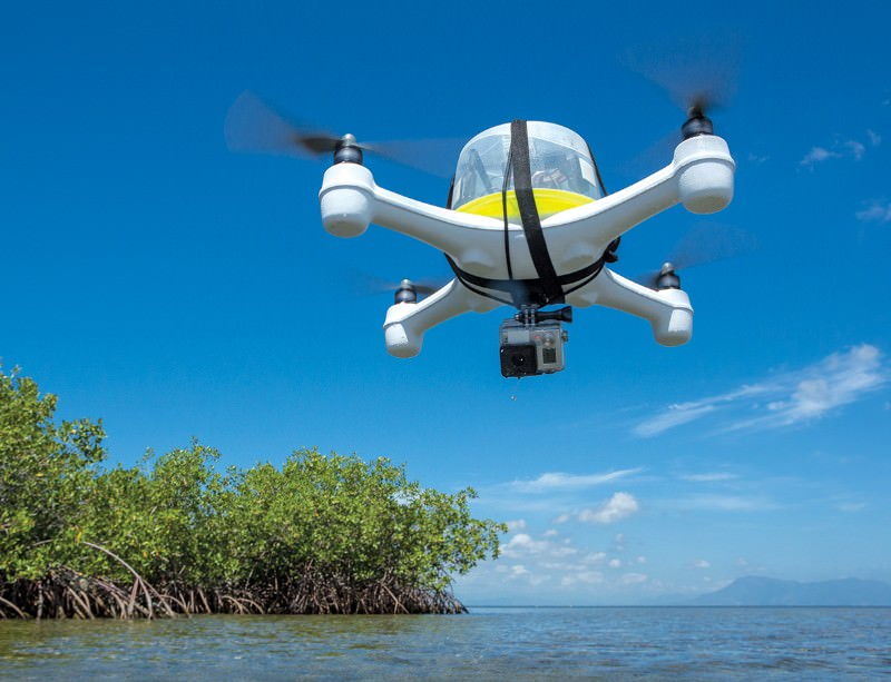 Flying high: Drones keep tabs on wildlife from above