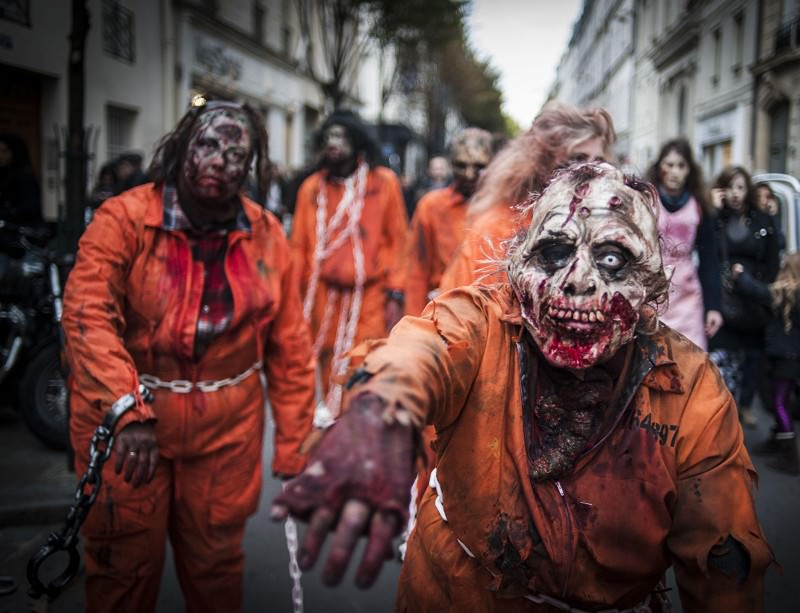 my zombie apocalypse essay example Chester college of new england zombie apocalypse essay prompt: you tried to tell your friends that the zombie virus was real that people could actually catch it and that one day, everyone would have to deal with the zombie apocalypse.