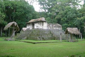 Jungle festivals led to first Maya cities