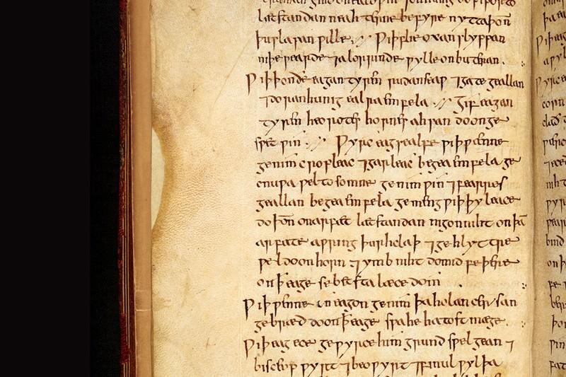 Anglo-Saxon remedy kills hospital superbug MRSA