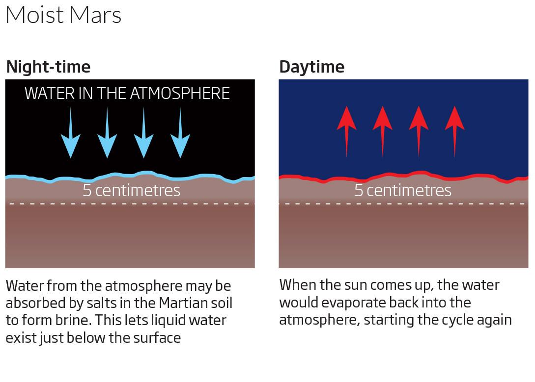 Moist Mars