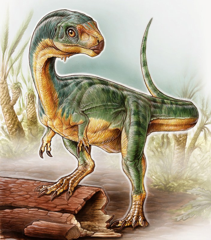 Freakiest dinosaur ever found is a vegetarian relative of T. rex