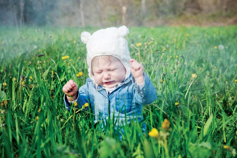 Child sneezing in a field