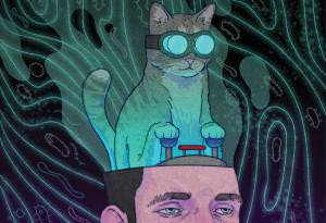 The cat made me do it: Is your pet messing with your mind?   New Scientist