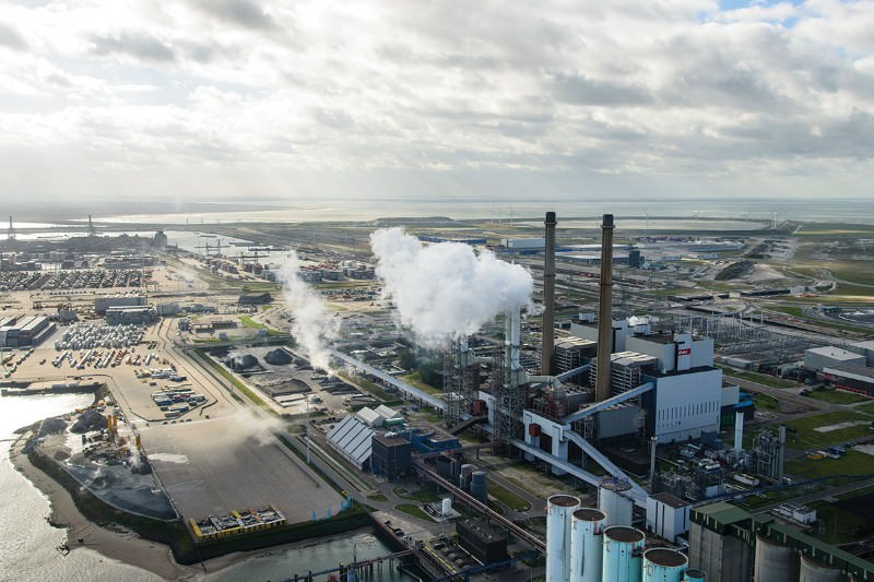 Dutch government loses world's first climate liability lawsuit