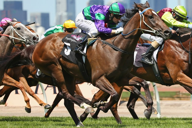 Selection for a 'speed gene' behind increase in racehorse speed