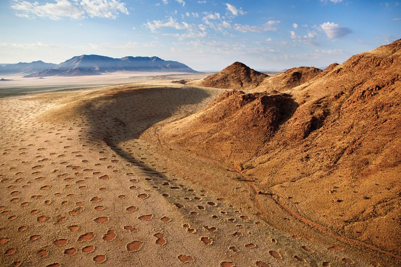 What is making mysterious fairy circles appear in the desert?