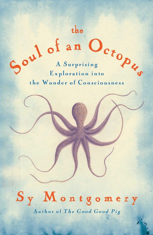 The Soul of an Octopus: Getting to know an intelligent mollusc
