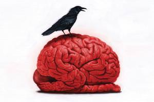 An inflamed brain may be a hidden cause of depression