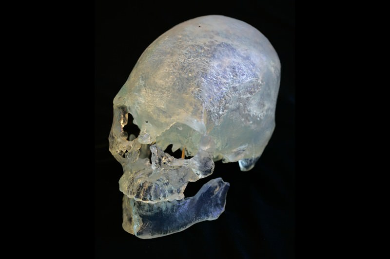 DNA study backs Native American claim to Kennewick Man remains