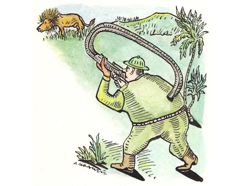 Killing of lion Cecil should spark ban on US trophy hunt imports