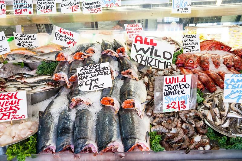 Plastic in the food chain: Artificial debris found in fish