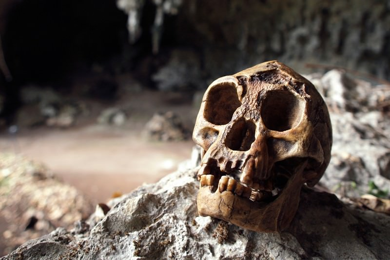 Frodo's basement: Secret chamber found where hobbit humans lived