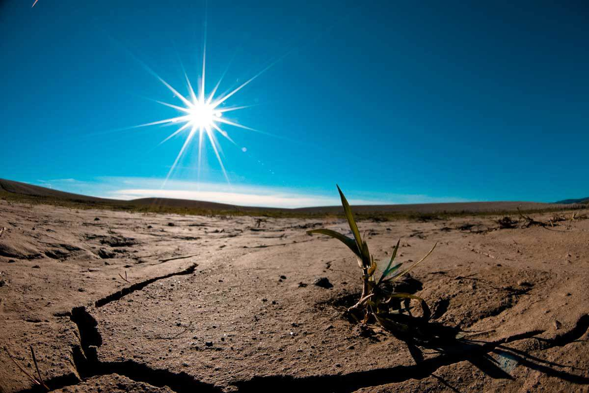 A desert, with a few stones and dry branches in the foreground and a very bright sun shining in a clear, dark blue sky