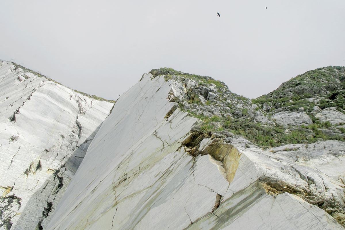 Alp 1