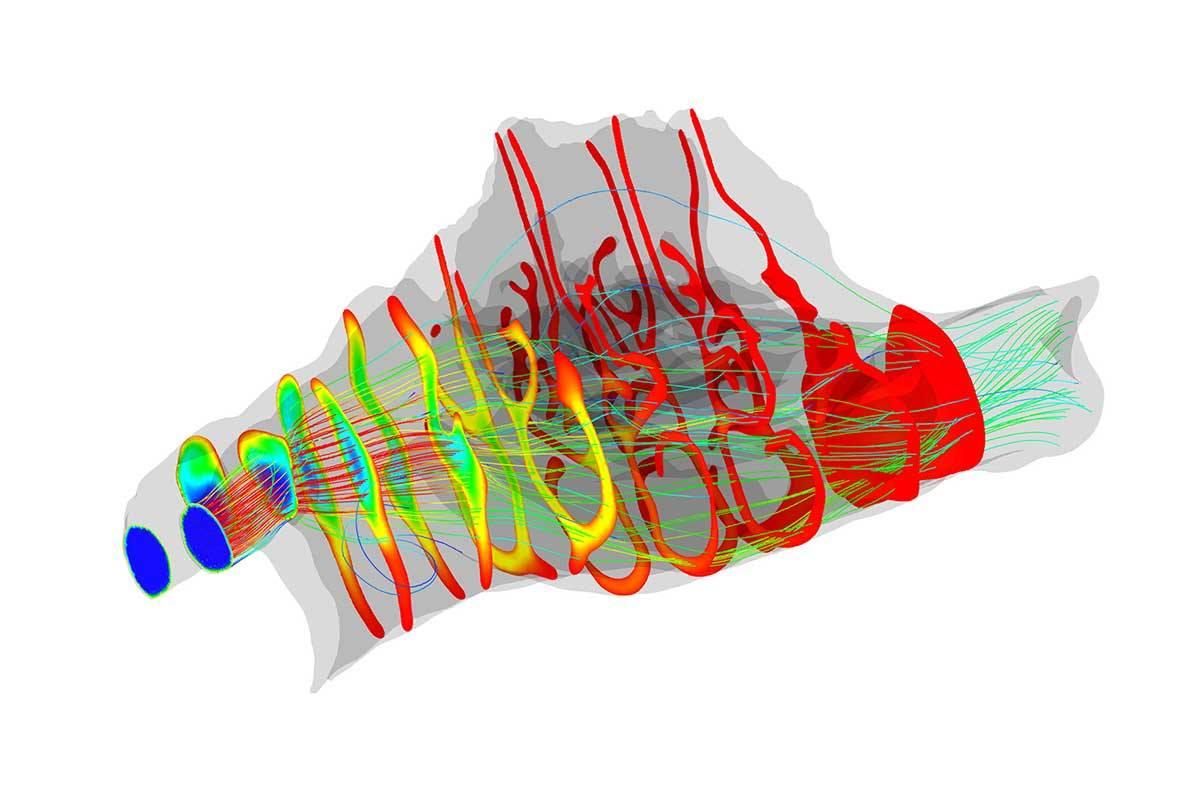 تطور الأنف : لماذا أنف الانسان كبير جداً