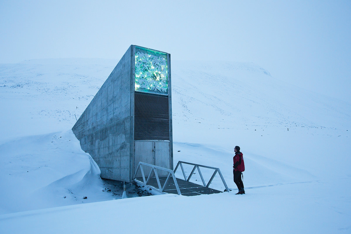 a new politics of climate change could save the world new scientist svalbard s seed bank the world is guarding diversity in gene stores