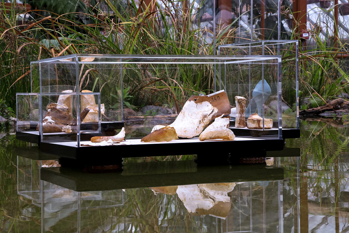 A glass display case holds oddly shaped mycelial shoes against a leafy backdrop