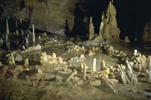 Smallish stalagmites vaguely discernible as arranged in a jumbled ring on a limestone cave floor