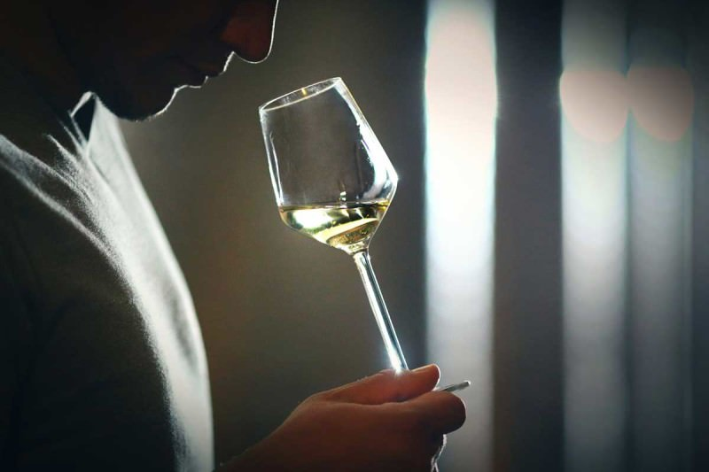 A person noses a glass of white wine