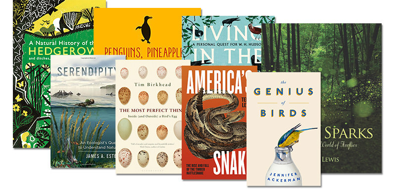 Win these 8 books