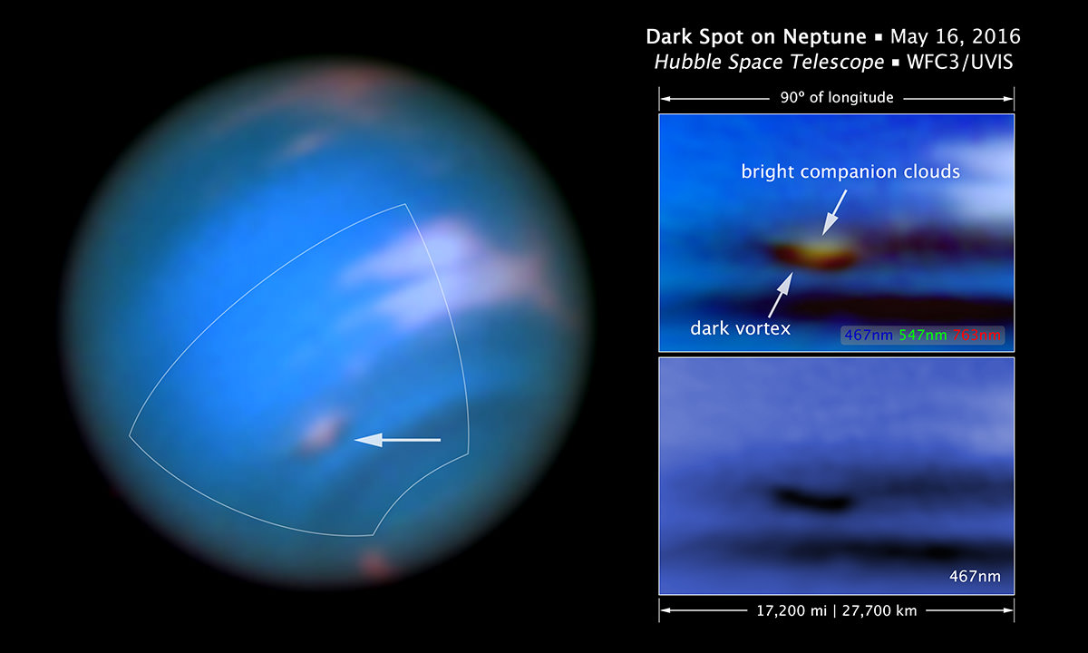 Hubble spots a new long lived storm raging on neptune new scientist - What is the phobia of small spaces pict ...