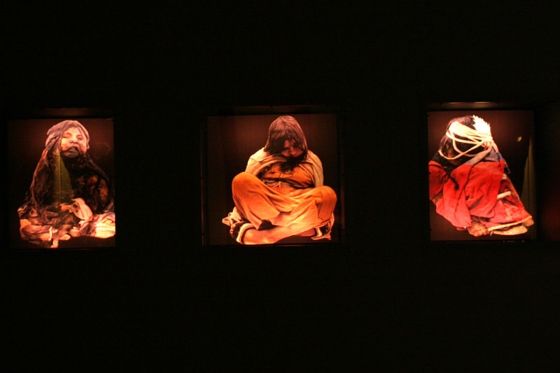 Incan mummies on display