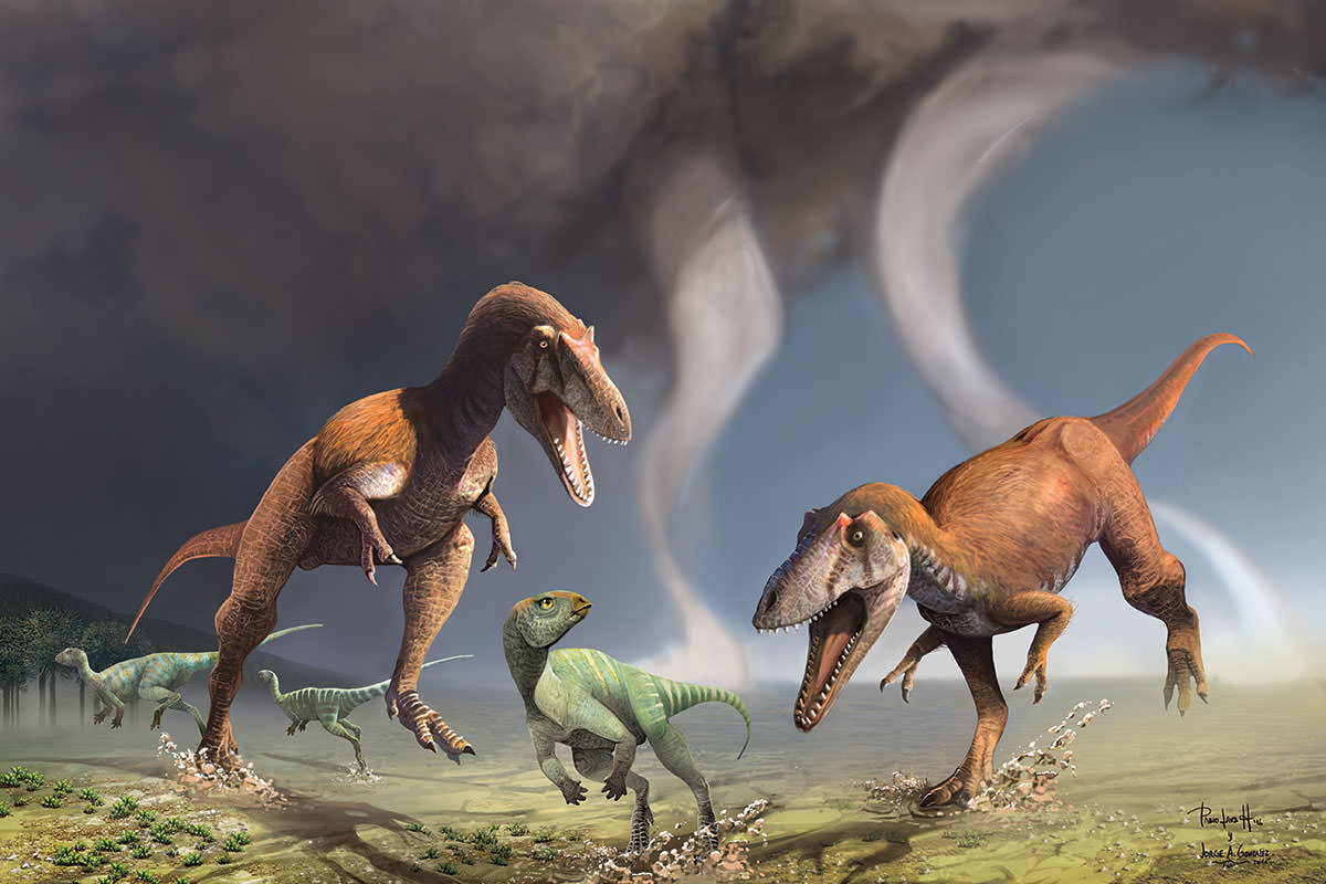 2097386 T Rex Lookalike Suggests That Tiny Arms Developed For A Purpose on Zoo Animals Names