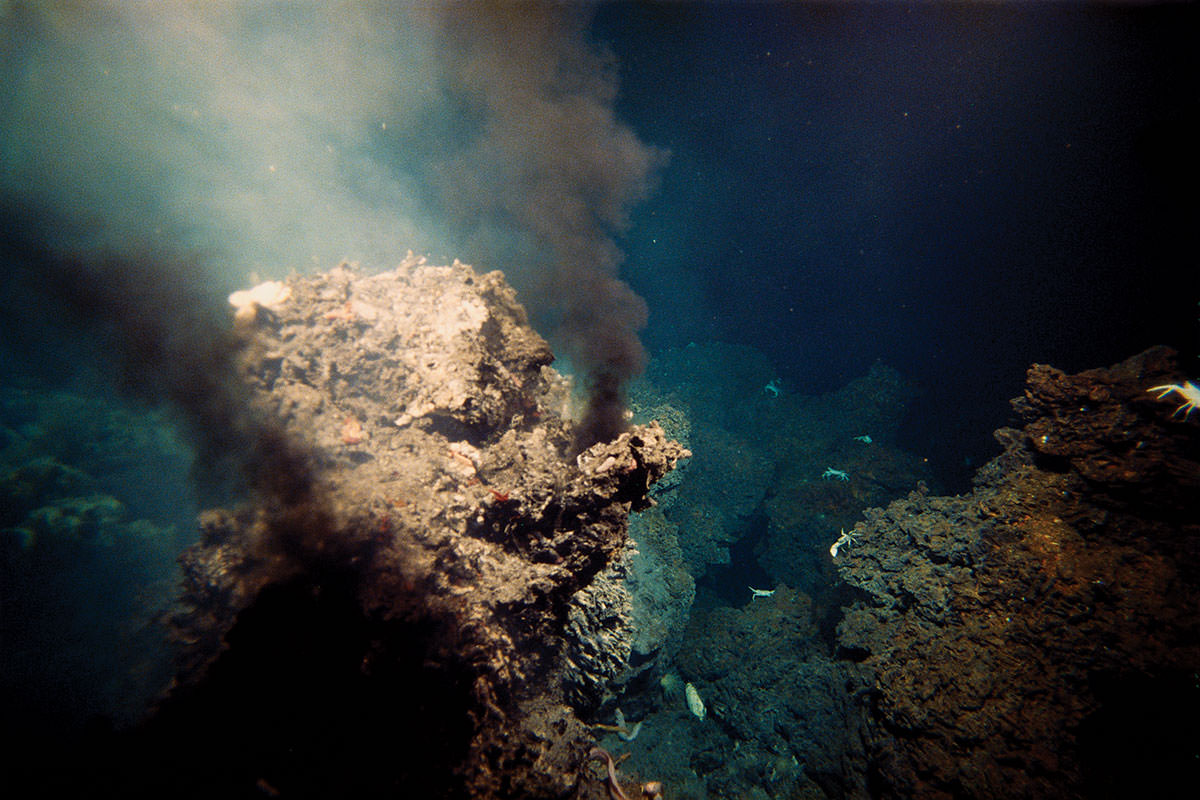 chemosynthesis in hydrothermal vents Find out information about chemosynthesis process in which carbohydrates are manufactured from carbon dioxide water found around hydrothermal vents on the.