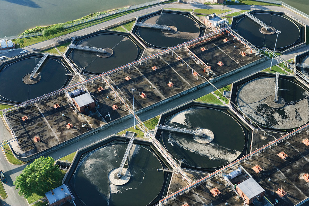 Bacteria Made To Turn Sewage Into Clean Water And