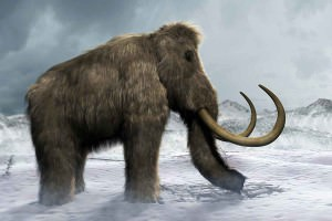 Illustration of mammoth in snowy landscape