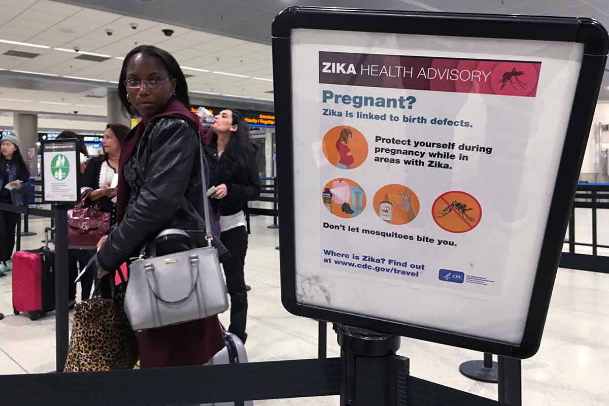 pregnant women travel warning as florida zika cases rise to 14 pregnant women travel warning as florida zika cases rise to 14