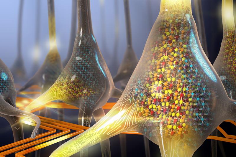 An artistic view of a neuron looking a bit computerish