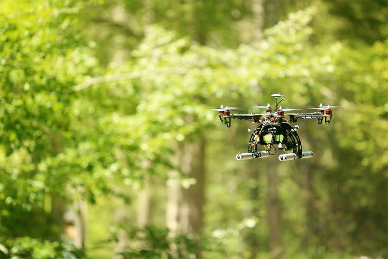 A drone hovers in a forest