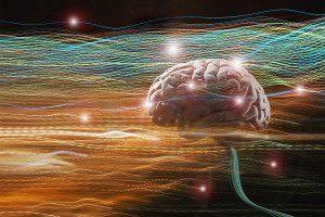 disembodied brain