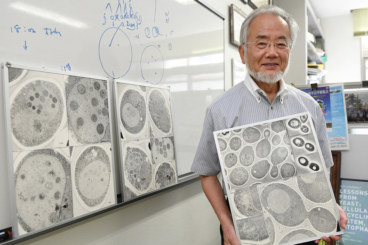 Yoshinori Ohsumi at the Tokyo Institute of Technology campus in Yokohama