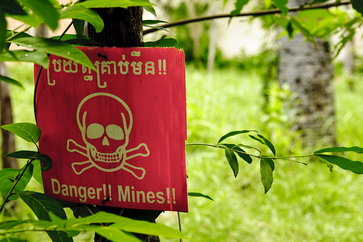 A beware mines sign on a tree