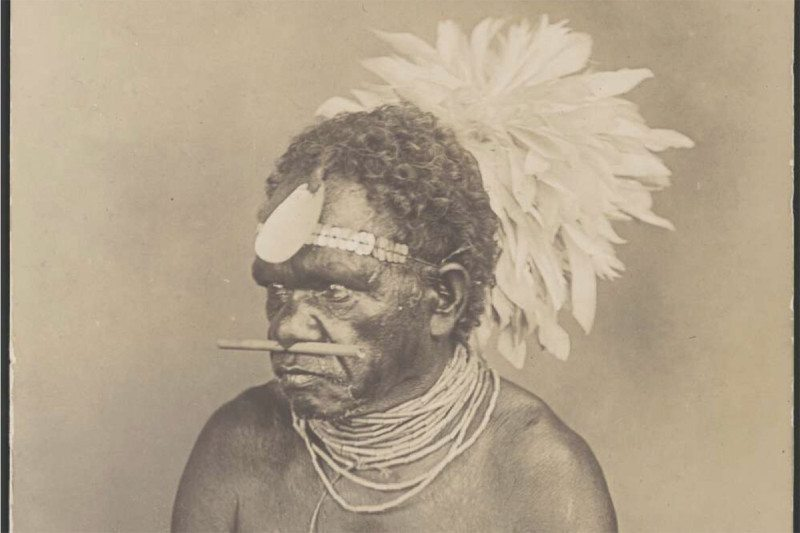 Portrait of an Aboriginal man with a shell and feather headdress and a nose piercing, Queensland, ca. 1900