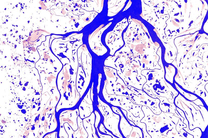 Yenisei River in Russia – permanent areas of water can be seen in blue. Pink shows areas where water is found less often.