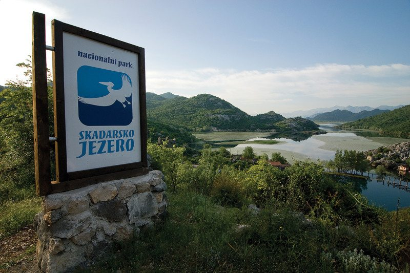 A sign with a Dalmatian pelican on it on the shores of Lake Skadar