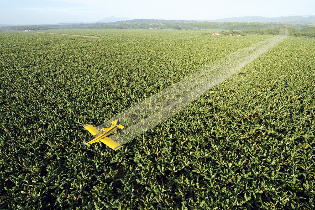 Plane sprays crops