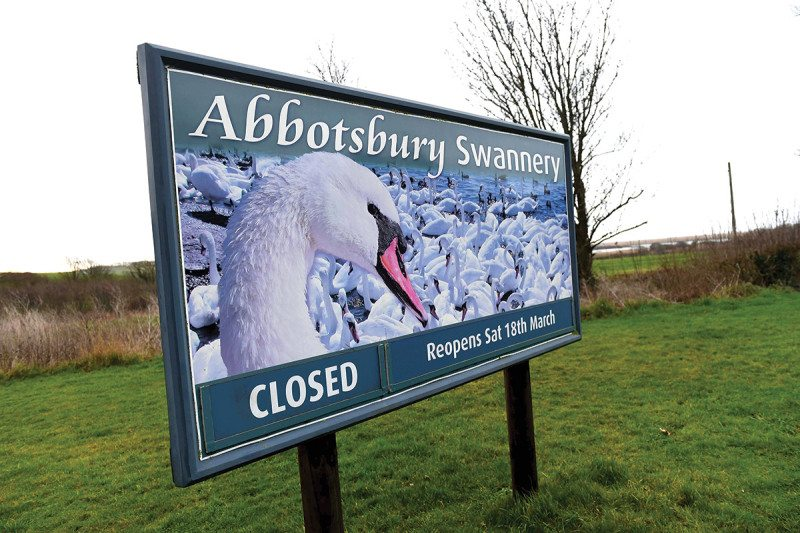 swannery sign
