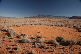 Namibian fairy circle