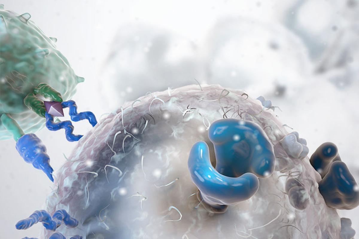 CAR-T gene editing