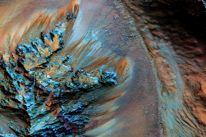 Microbes could survive on Mars, a year-long experiment proves