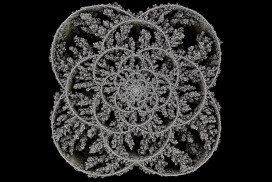 Filigree-like artwork called Aggregation 24 by Andy Lomas