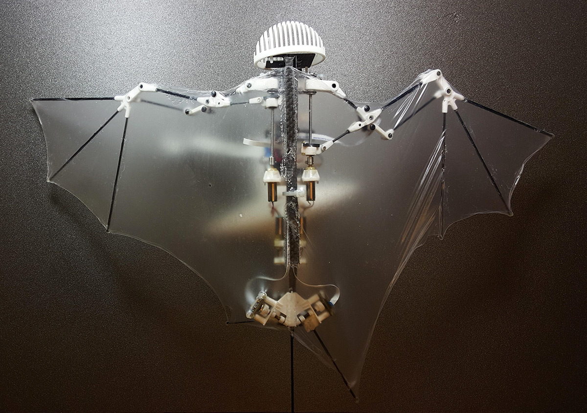 Bat-like robot